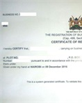 01 - Certificate of business registration